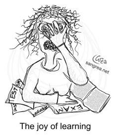 joy-of-learning